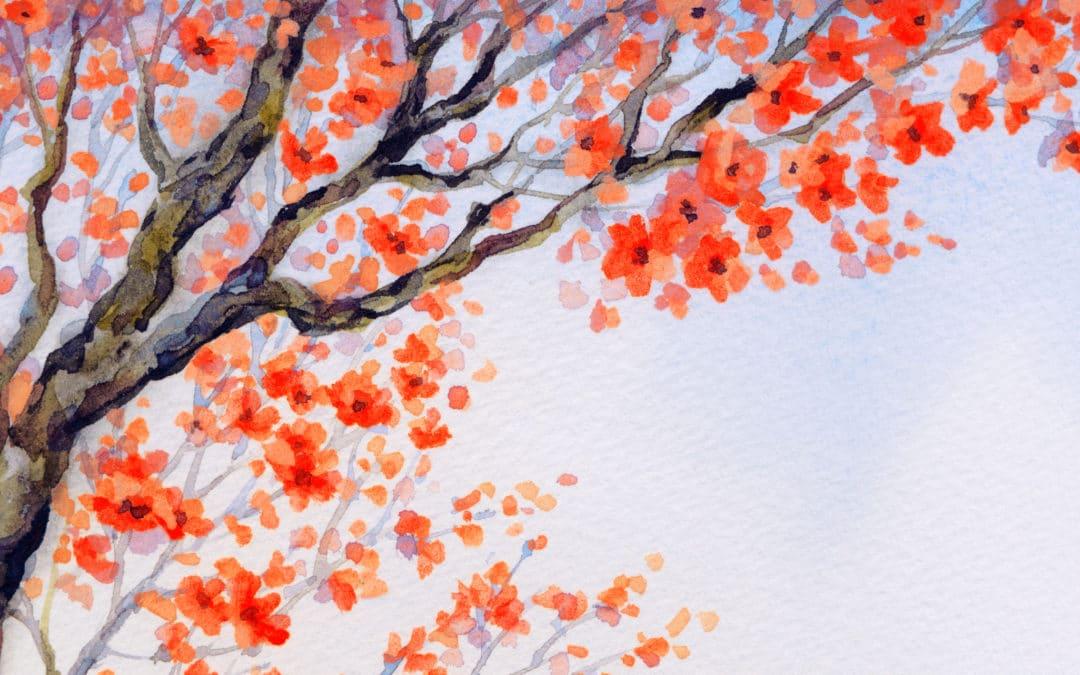 Tao Shiatsu, a Loving Shiatsu Therapy